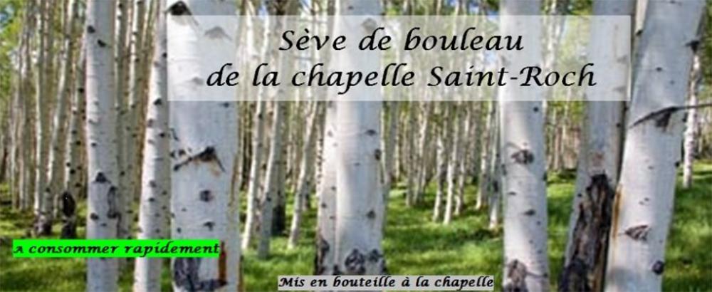 Chapelle_Saint-Roch_Sève_Bouleau_01