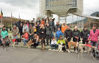Balade_Chiens_Levriers&Compagnie_03