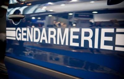 Gendarmerie logo porte