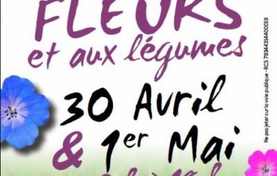 Marché_Fleurs_Mandray_01