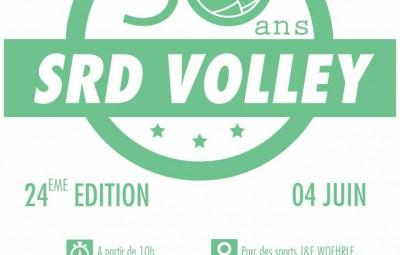 Green_Volley_2016_Affiche_01