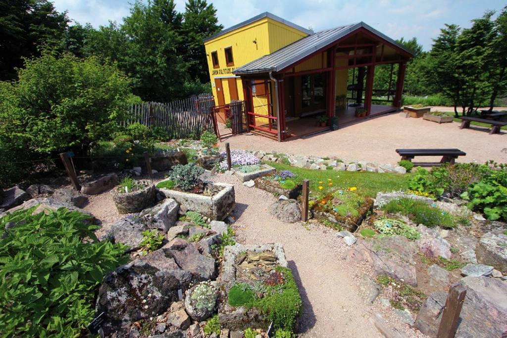 Massif vosgien le jardin d altitude du haut chitelet - Jardin d altitude du haut chitelet ...