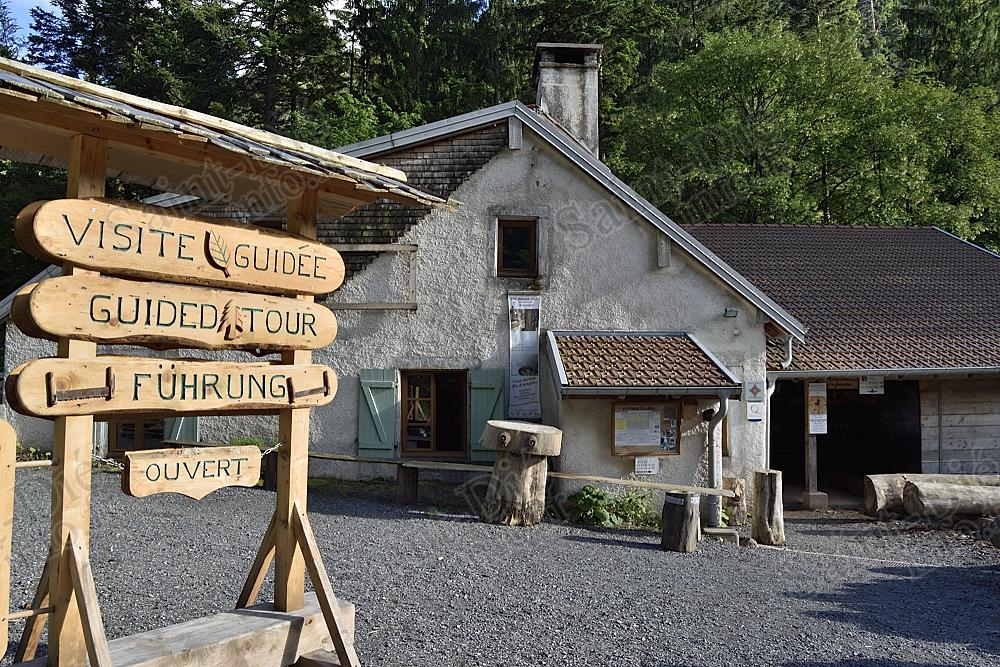 Ban-sur-Meurthe-Clefcy – Réouverture de la Scierie du Lançoir