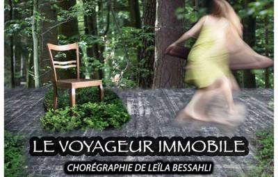 Voyageur_Immobile_01