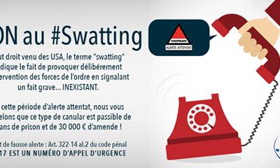 NON_Swatting_01
