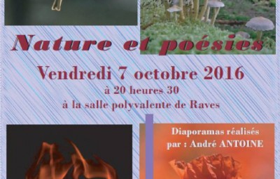 Projection_Raves_01