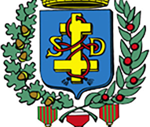 SDDV_Logo_01
