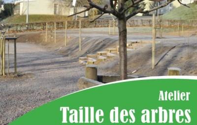 Atelier_Taille_Croqueurs_de_Pommes_01