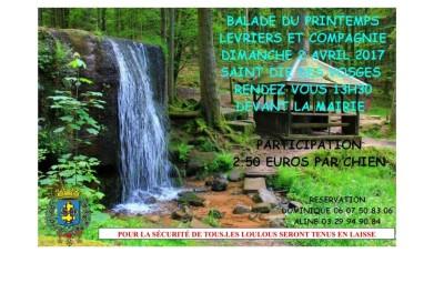 Balade_Printemps_Lévriers_01