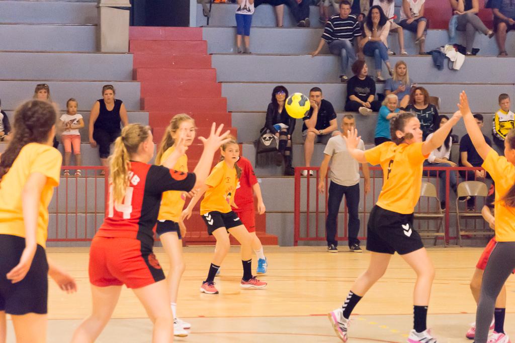 La finale de la coupe des vosges de handball s 39 est jou e - Coupe d europe de handball ...