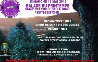 Balade_Printemps_Galgos