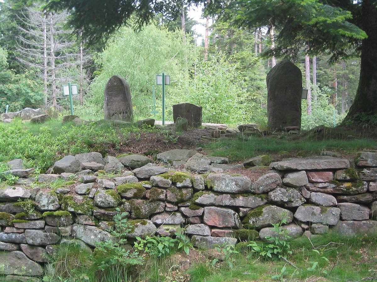 Rappel – Journée de nettoyage au camp celtique