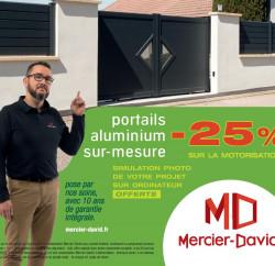 Mercier David