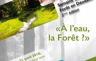 Semaine_Forêt_Déodatie (1)