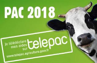 Telepac_2018