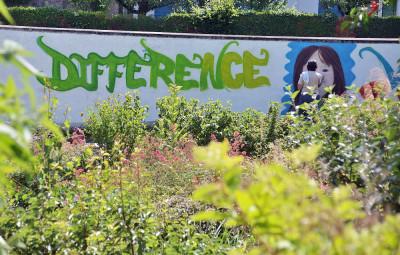 Graff_Semaine_Art_de_la_Différence (2)