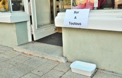 Bar_Toutous (2)
