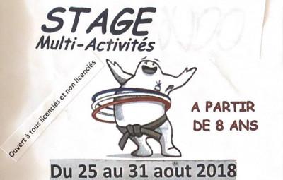 Stage_Dojo_des_Jumeaux