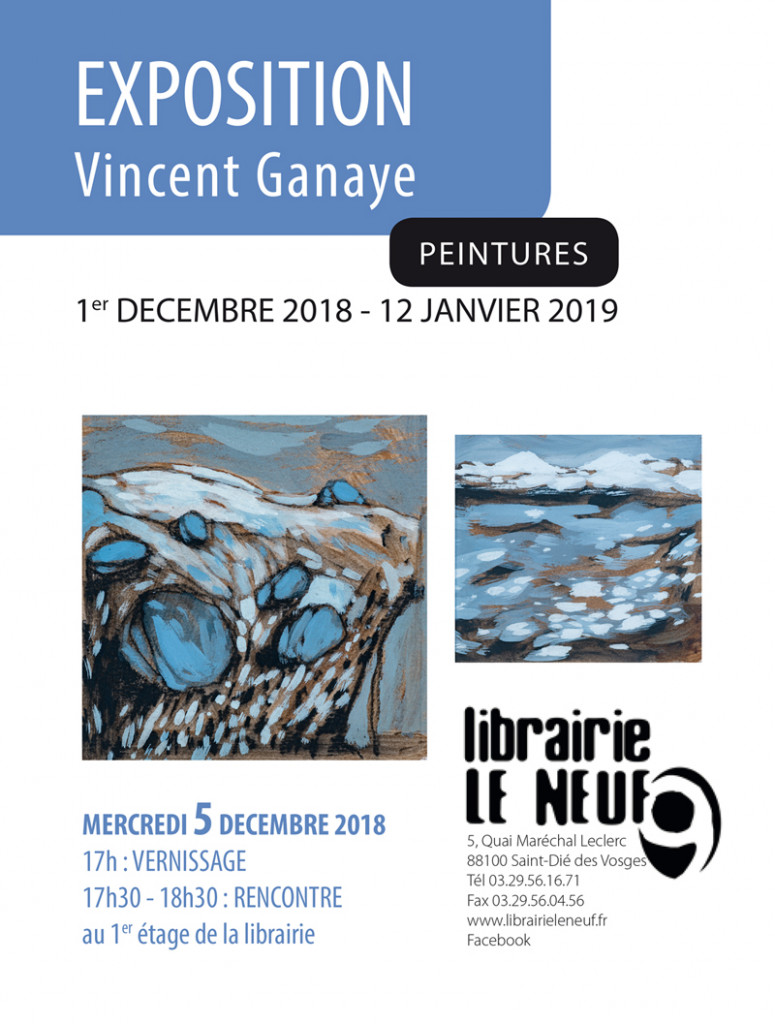 Vincent_Ganaye_Exposition_Le_Neuf