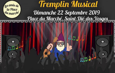 Tremplin_Musical_Amis_Place_du_Marché (2)