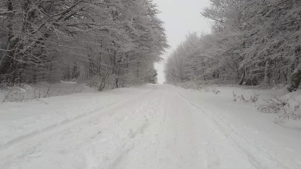 Neige_Route_des_Crêtes_Novembre_2019 (2)