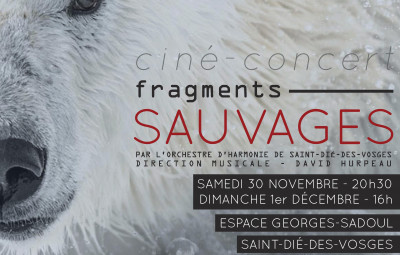 Présentation_Fragments_Sauvages_01