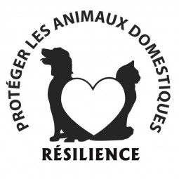 Résilience_Logo