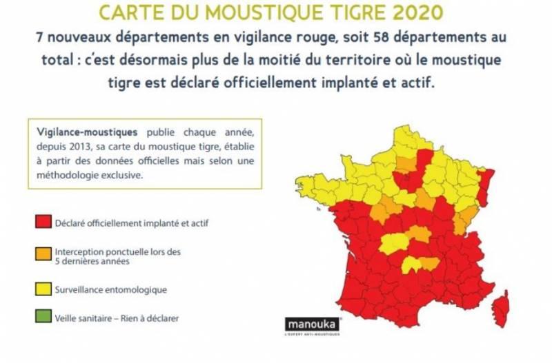 moustique-tigre2020
