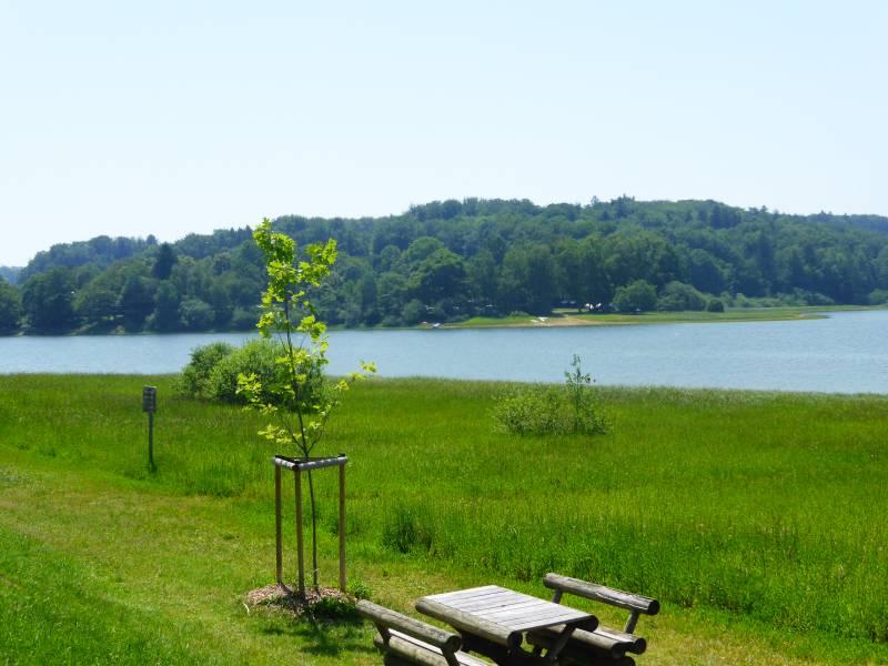 lac-bouzey-baignade-14