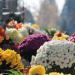 Entretien-et-fleurissement-tombe-1_310x207