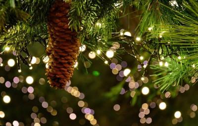 christmas-garland-3891232_1920