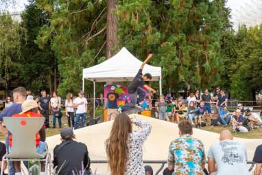contest skate saint dié DC SHOES (2)