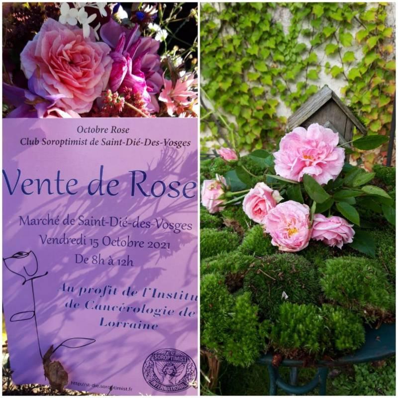 Roses_Contre_Cancer_SOROPTIMIST