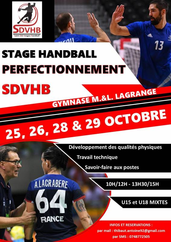 SDVHB_Stage_Perfectionnement